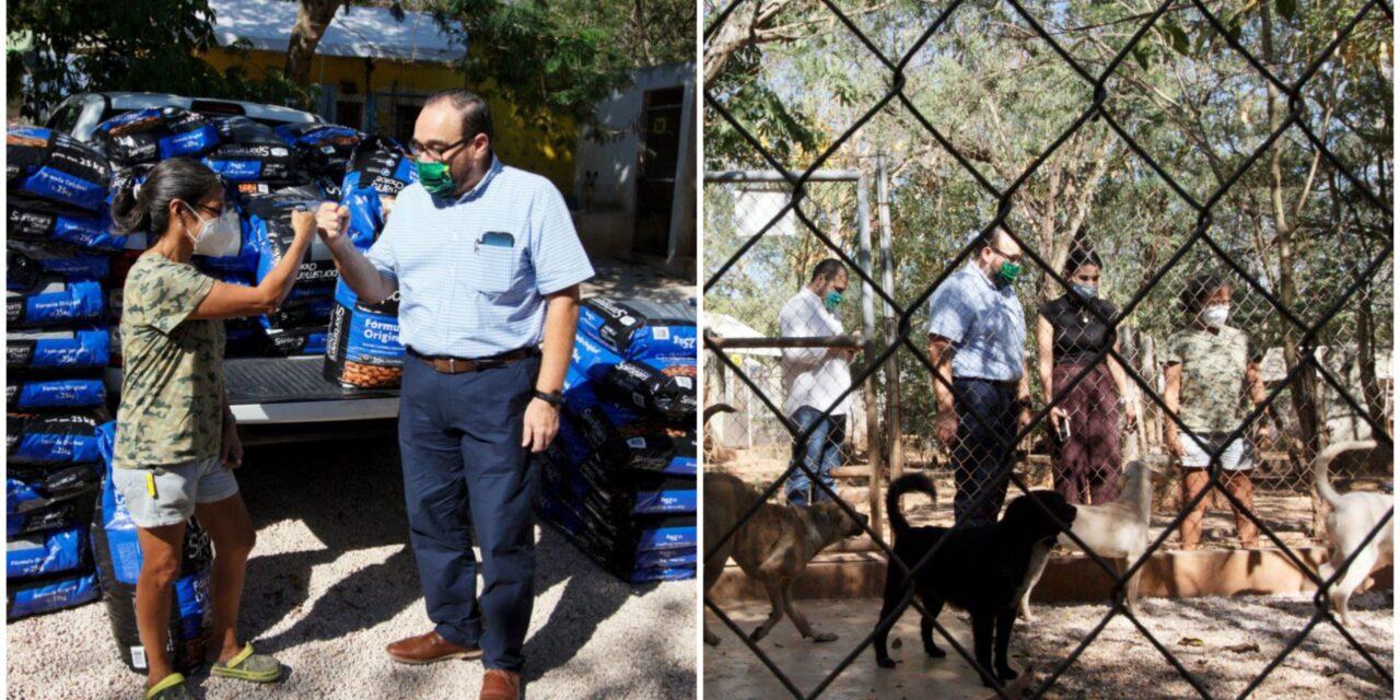 Reto Peek´, de Ramírez Marín, beneficia a más de 500 perros en refugios