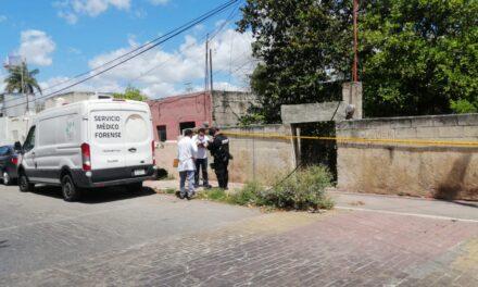 Solitario abuelo de 80 años, muerto en casa de la Mayapán