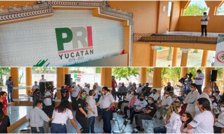 Al fin parió PRI-Yucatán: lista de precandidat@s a diputaciones locales