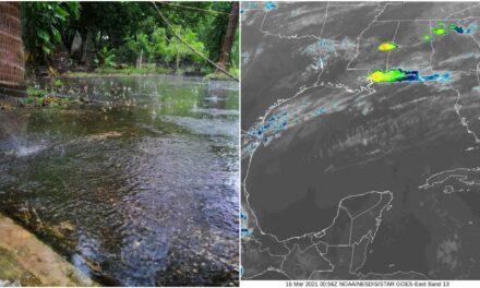 'Primera lluvia de las ciruelas' en Yucatán, el próximo fin de semana
