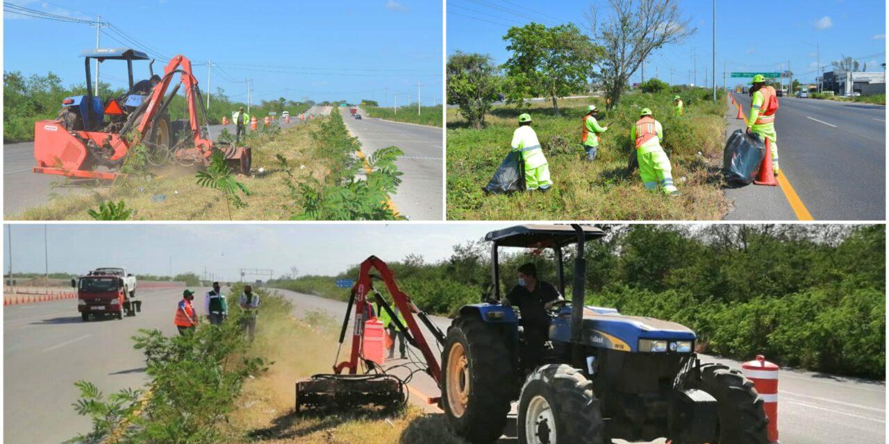 Conservación rutinaria de carreteras federales en Yucatán previo a vacaciones