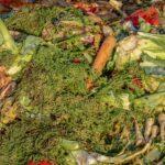 Casi una quinta parte de los alimentos a nivel mundial se desperdicia