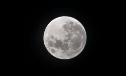 Hoy, la luna llena que no es rosa pero sí 'más grande': está más cerca de la Tierra