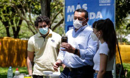 Mérida, la más sustentable: meta de Renán de otros 150 mil árboles