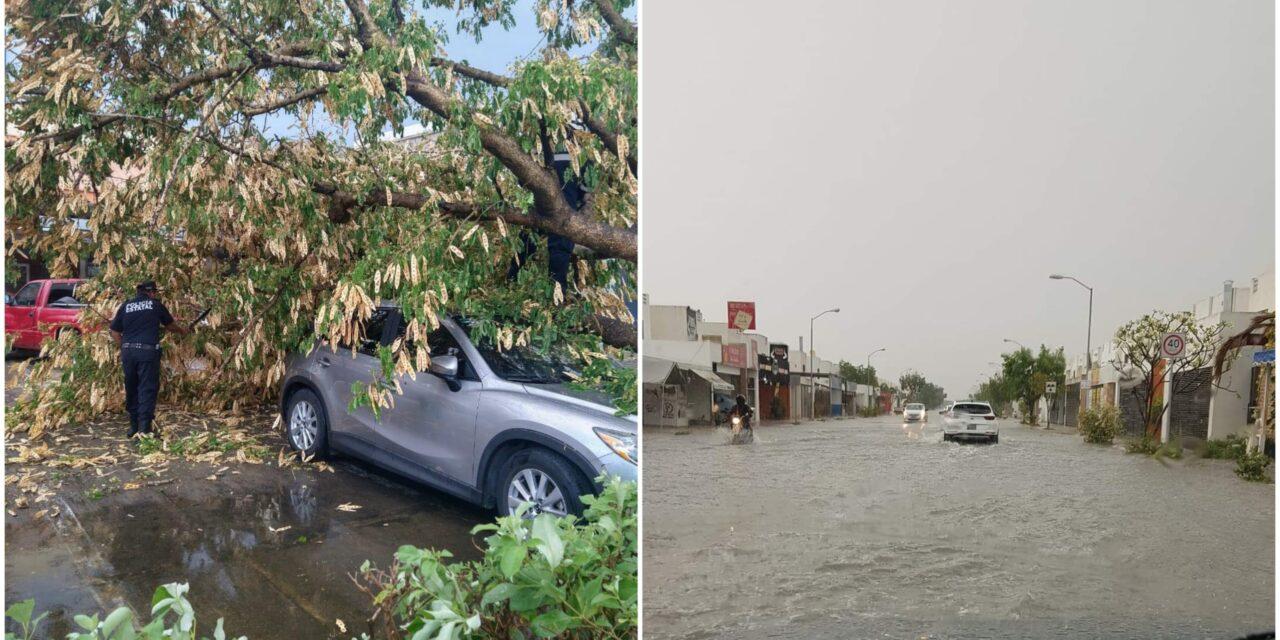 'Probadita' de tormenta sobre Mérida; sufren oferentes al aire libre