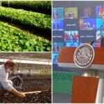 AMLO presume Sembrando Vida en foro global; insiste en apoyo de EU
