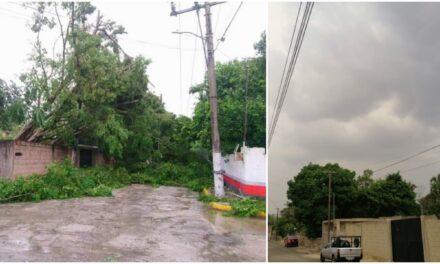 ¿Cordonazo de la Santa Cruz? Potencial último frente frío en Yucatán