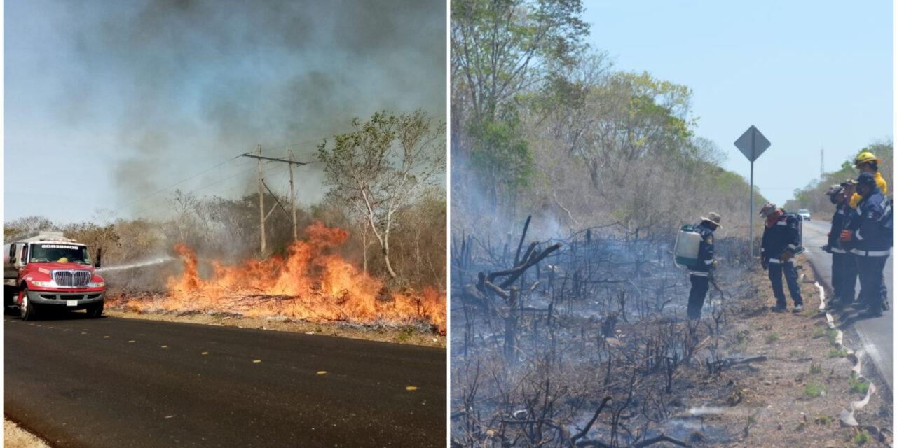 Con fuego controlado habilitan brechas preventivas en la Mérida-Celestún