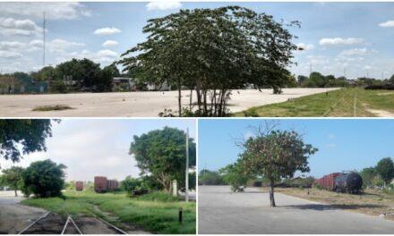 Gran Parque La Plancha, en proyecto de Tren Maya en centro de Mérida