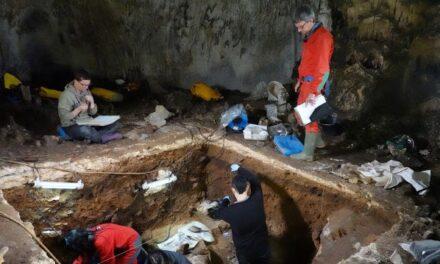 Logran por primera vez analizar ADN nuclear neandertal conservado en cuevas