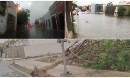 Lluvia fuerte en Mérida trastorna actividades y tensiona sectores