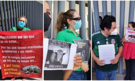 """Protestan por """"retroceso"""" en temas de bienestar y protección animal"""