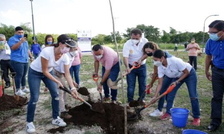 """""""Duelo Verde Rotario"""": dos mil árboles en Paseo Henequenes"""
