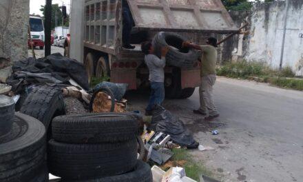 Los cacharros y la falta de conciencia ciudadana en algunos sectores de Mérida