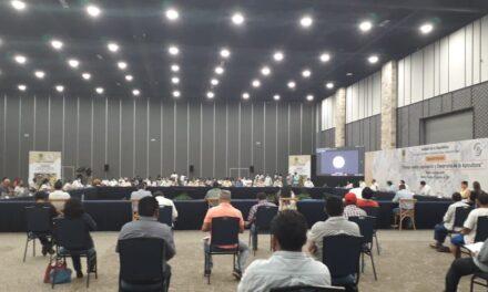 Alianza Maya por las Abejas de la Península de Yucatán Kaabnalo'on fija postura por leyes en el ramo
