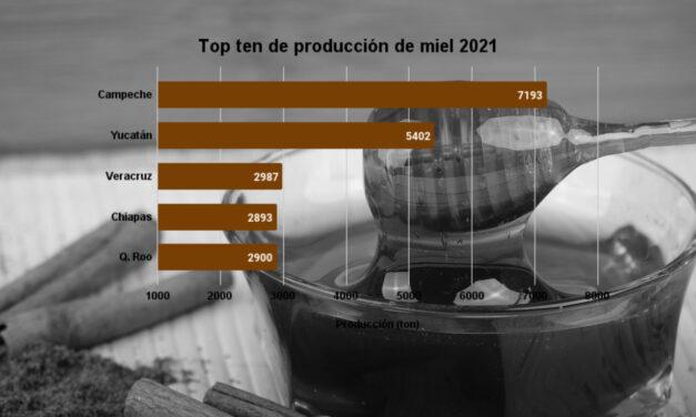 Trago amargo: Campeche tira a Yucatán del 1er lugar en producción de miel