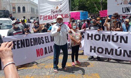 Defienden suspensión contra mega granja porcícola en Homún